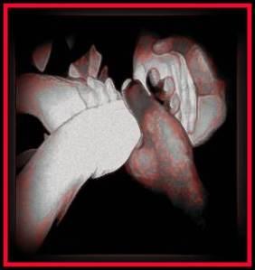 Hands6_17554441_std